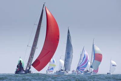 Lambay Races in Howth this Saturday